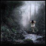 solitudeweb
